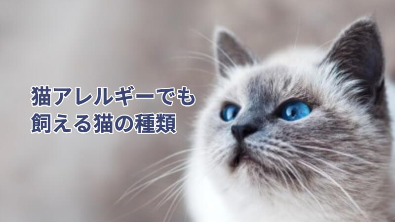 猫アレルギーでも飼える猫の種類