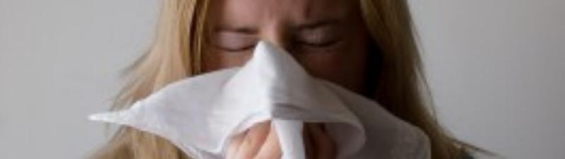 猫アレルギーの症状