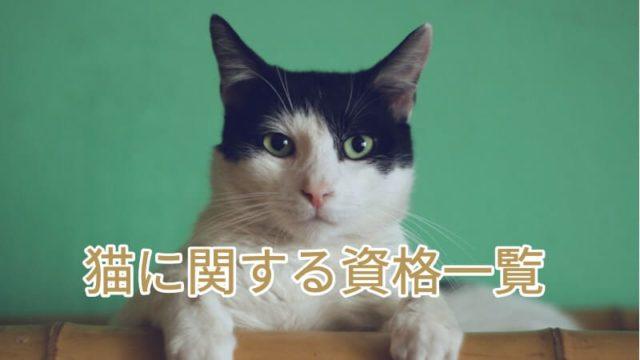 猫に関する資格一覧
